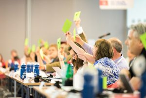 Delegates vote at a CEC assembly. Photo: Albin Hillert/CEC.